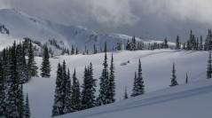 Fresh Powder near Valemount, BC