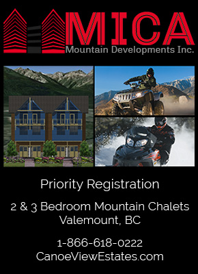mica developments valemount bc